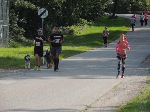 Drei Schlösser Lauf 2019